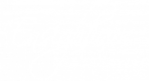 Ensightium Logo White